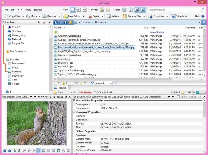 Directory Opus - удобный универсальный файловый менеджер